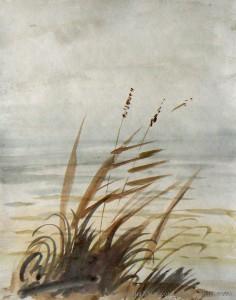 watercolors 14